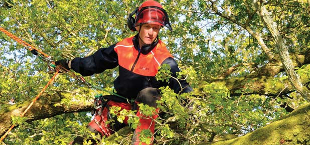 Climbing and Arborist Equipment