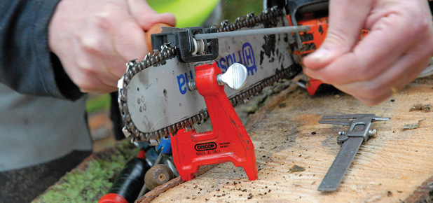 Saw Sharpening Service : Chainsaw tools and servicing clark forest